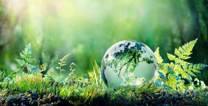 Eine neue CFO-Taskforce der UN soll Unternehmen dabei unterstützen, nachhaltige Finanzierungen auf den Weg zu bringen.