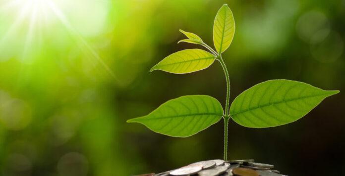 Nachhaltigkeit spielt für die Finanzabteilung eine immer größere Rolle. Auf der ersten Green FINANCE-Digitalkonferenz am 23. März werden die aktuellsten Trends und viele Praxisbeispiele aus der Sustainable-Finance-Welt diskutiert.
