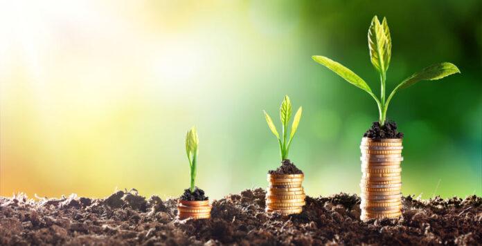 Eine grüne Finanzierung aufzunehmen ist nicht mit finanziellen Vorteilen verbunden, bemängeln Treasurer.