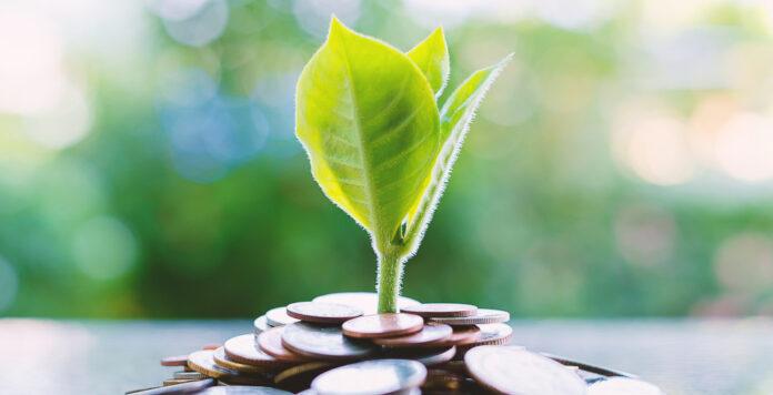Green Finance bleibt auch in Zeiten der Coronakrise wichtig.