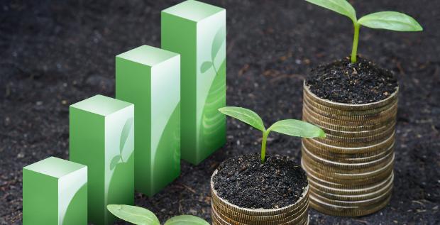Banken und Investoren sprechen immer häufiger über Green Bonds. Der Markt wächst stetig. Doch kommt das Thema auch bei den Unternehmen an?