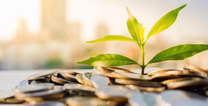 Green Finance, Grüne Finanzierung, FINANCE CFO Panel, CFO, Nachhaltigkeit, ESG, Horváth & Partners, Kai Grönke, Achim Wenning, FINANCE-Research