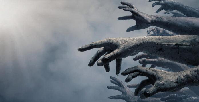 Staatliche Hilfen halten viele Zombie-Unternehmen derzeit über Wasser. Aber wie können sie wieder langfristig auf die Beine kommen?