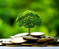 Green Finance: Finanzabteilungen entdecken das Thema Nachhaltigkeit