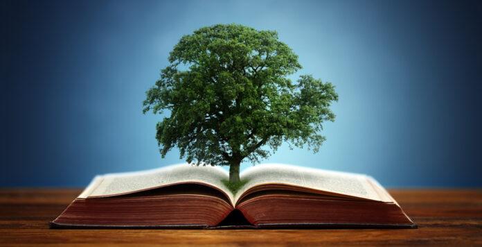 Die ESG-Berichtspflicht führt laut einer Studie von Cometis noch nicht zu einer hohen Qualität der Nachhaltigkeitsberichte.