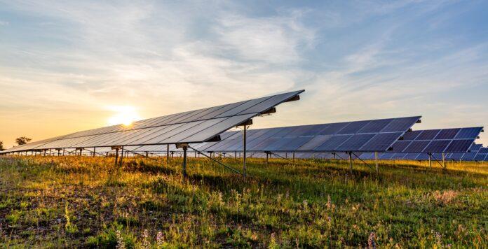 Blue Elephant soll der nächste IPO-Kandidat sein. Schafft das Unternehmen für Solarparks eine ähnliche Erfolgsstory wie Konkurrent Encavis?